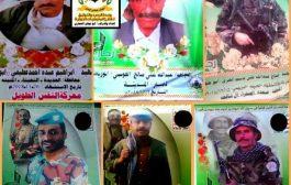 مليشيات الحوثي خسائر بالجملة