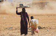 إخلاء مخيم عين عيسى إثر فرار عوائل دواعش بعد قصف تركي