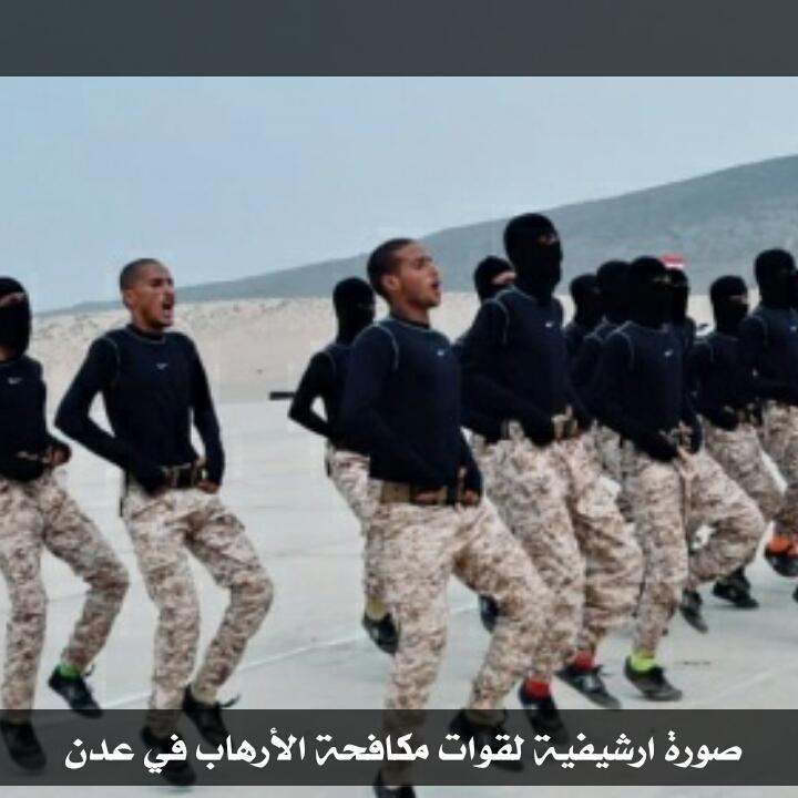 تحليل: ما مستقبل الحرب على التنظيمات الإرهابية في جنوب اليمن
