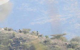 مصرع وجرح العديد من عناصر المليشيات بمنطقة الفاخر بالضالع