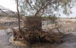 السيول تتسبب بكارثة إنسانية في دلتا أبين