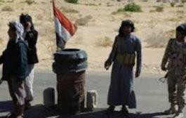 حلفاء الدوحة في اليمن.. ماذا بعد الحشد عسكريا في شبوة