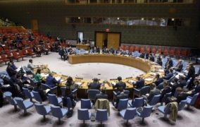 معركة أفريقية من أجل مقعد دائم في مجلس الأمن الدولي