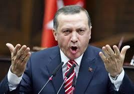 أردوغان : السلام في ليبيا  يمر عبر تركيا