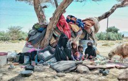 الصليب الأحمر : النظام الصحي في اليمن هش ونصف المرافق الصحية  خارجة عن الخدمة