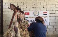 #تركيا تضع #اليمن على خارطة تدخلاتها في الإقليم
