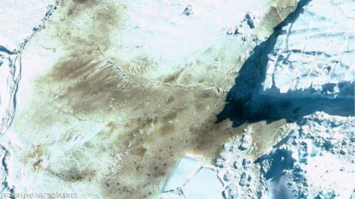 صور الفضاء تحمل مفاجأة سارة: