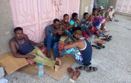 مواطنون لحج الحوطة يشكون من التزايد المفزع للمهاجرين الافارقة