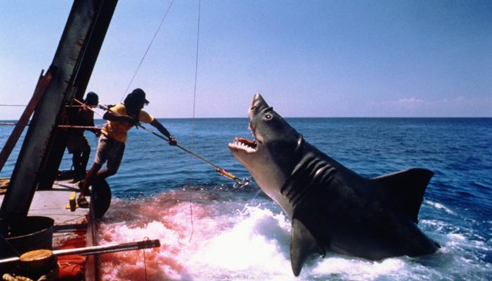 لماذا نعشق أفلام الحيوانات القاتلة؟ تعرف على الإجابة