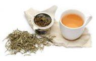 تناول الشاي الابيض وتأثيراته على الجسم