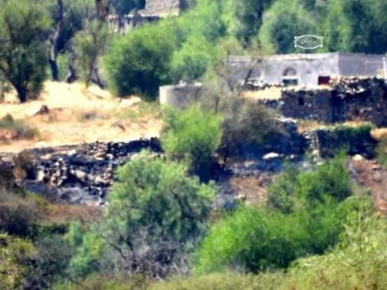 المليشيات الحوثية تحرق منازل ومزارع المواطنين في عزلة بمديرية الحشاء