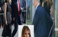 الأمتار الأخيرة نحو البيت الأبيض: كيف تبدو المنافسة بين ترمب وبايدن؟