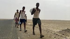 الهجرة الدولية تعلن تزايد أعداد المهاجرين الأفارقة لليمن