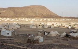 الهجرة الدولية : رصدنا نزوح 204 أسرة خلال الأسبوع الماضي