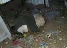 مسلح يقتل بائع في محافظة إب