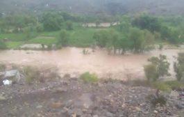 لحج ... مناشدة عاجلة لإغاثة المتضررين من السيول في المسيمير