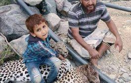 الهيئة العامة لحماية البيئة تعلق حول حادثة قتل نمرين عربيين بمحافظة أبين